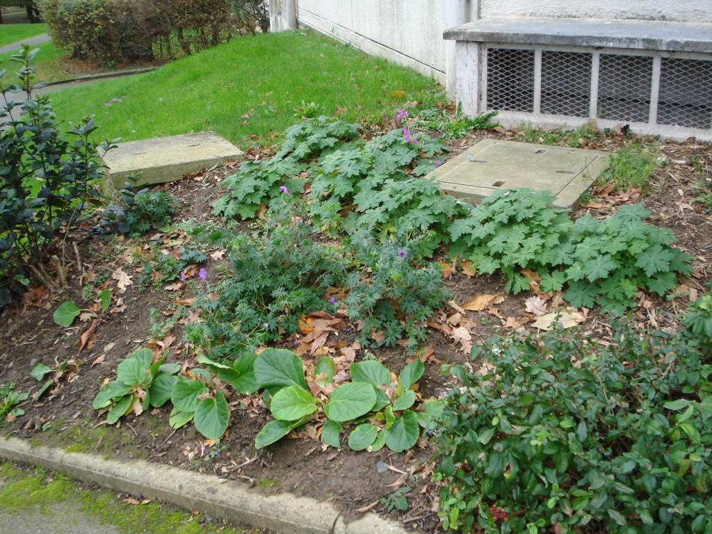 Jardiner facile sans pesticides sans engrais chimiques