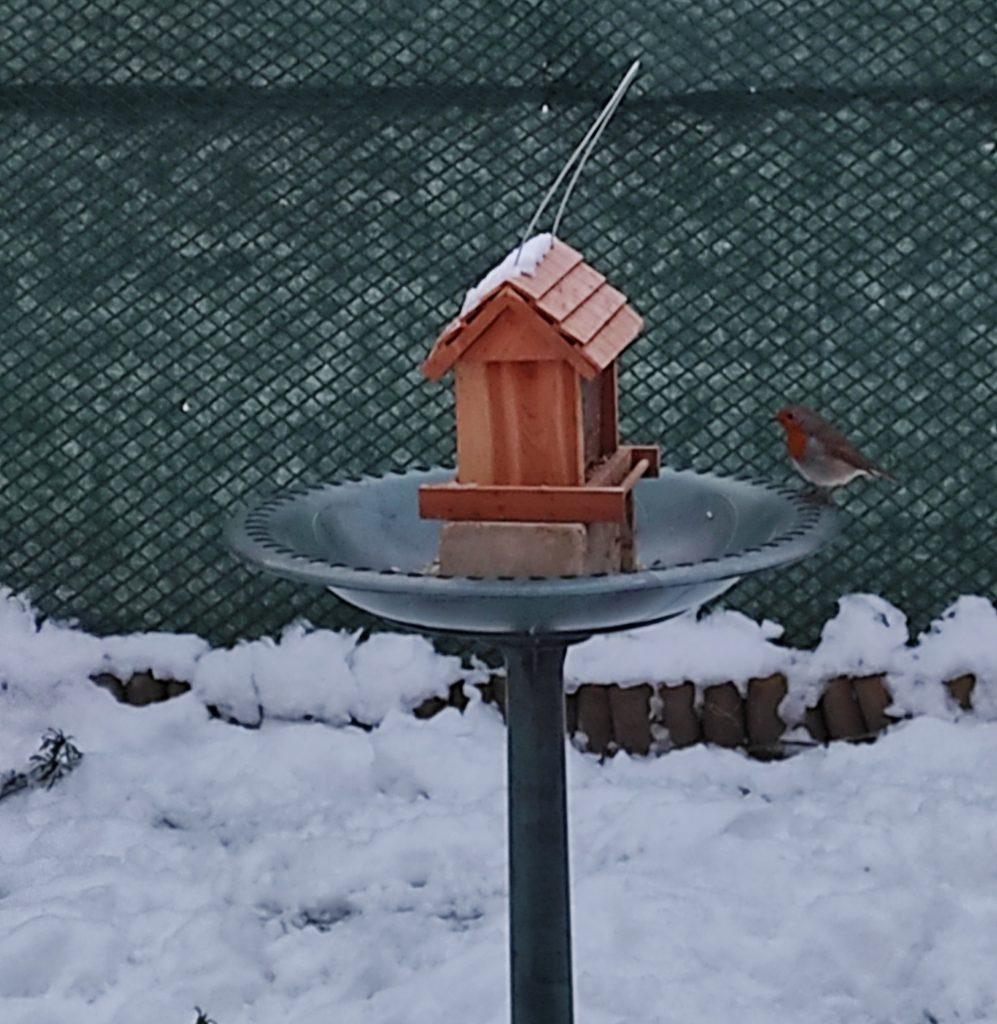 La Ville Oger sous la neige